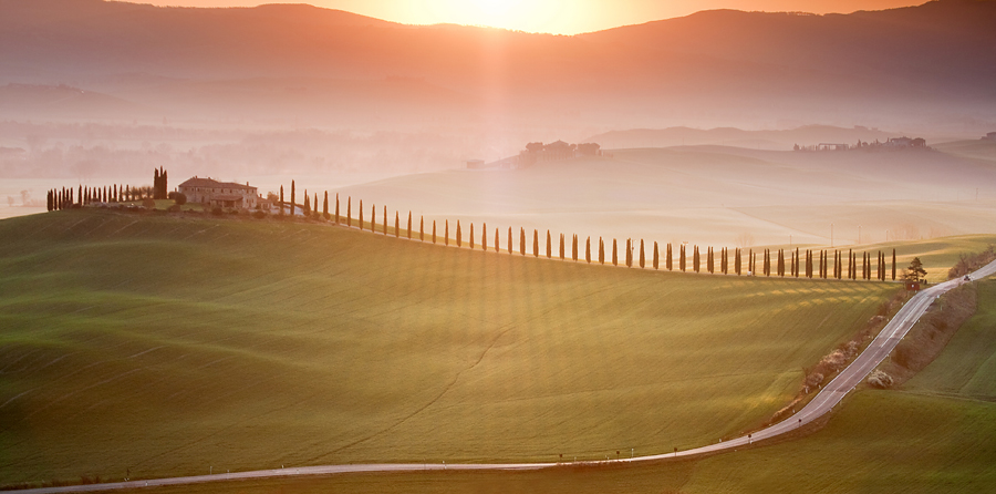 Morning In Vald'orcia